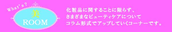 美ルーム1.jpg