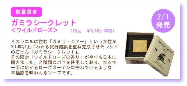 NEW201301-11.jpg
